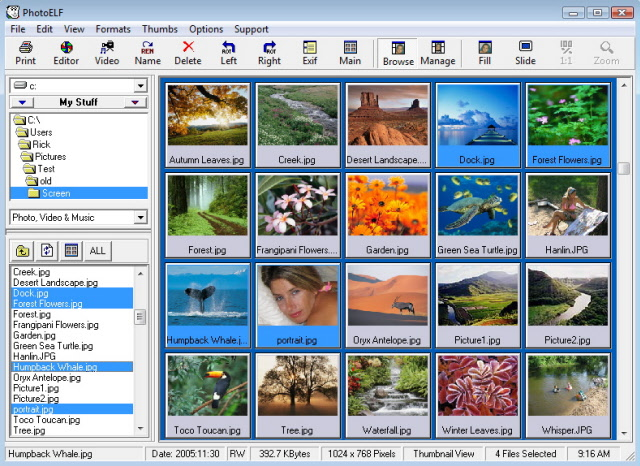 photo editor main program window